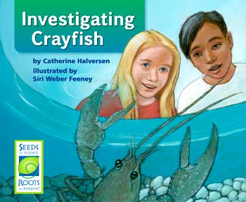 Investigating Crayfish cover, illustrated by Siri Weber Feeney